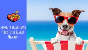 Summer Travel with Your Furry Family Members